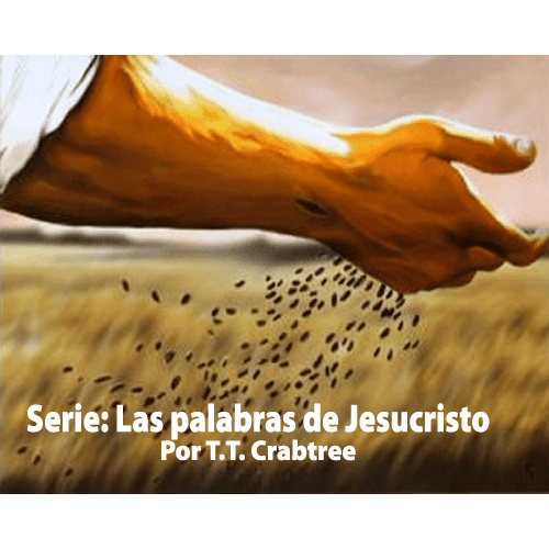 SeriePalabrasJesus_WebCover