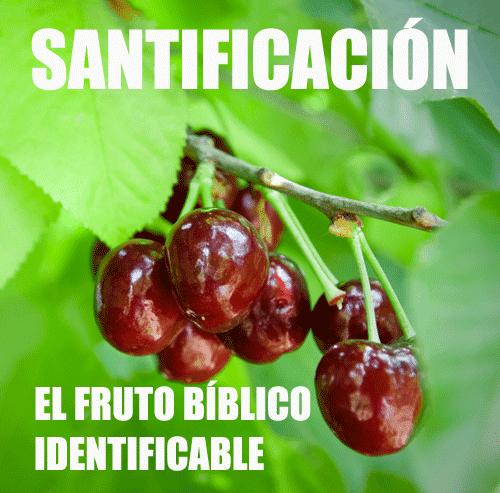 Logoi Ministries Santificación El Fruto Bíblico Identificable